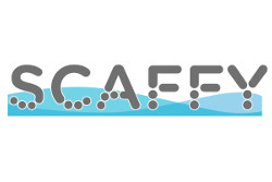 SCAFFY project